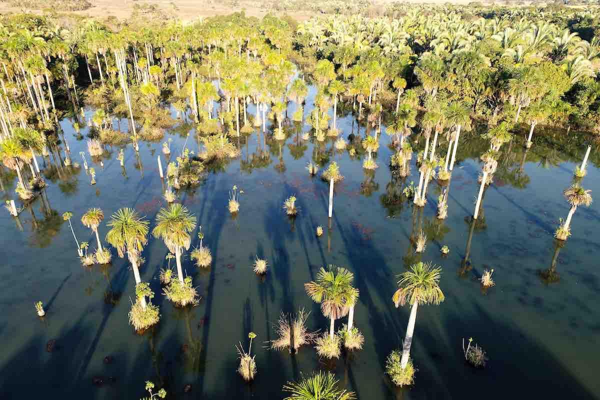 Imagem do Interior do Mato Grosso.