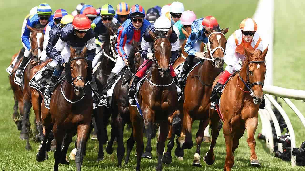 Horses racing at the Melbourne Cup